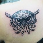 owl-face-copy